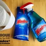 Unique Windex® Cleaning Tips © www.roastedbeanz.com #WindexMovieNight #PutSomeWindexOnIt [AD] #CollectiveBias #shop