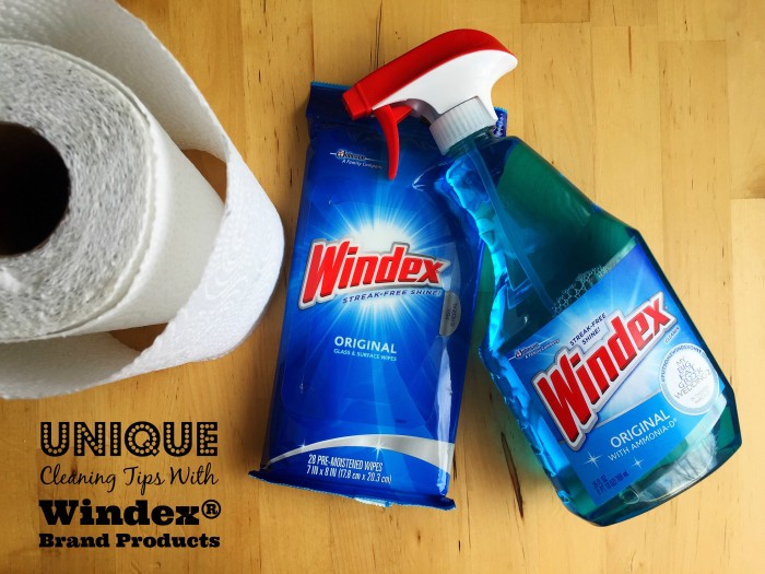 Unique Windex® Cleaning Tips © www.roastedbeanz.com #WindexMovieNight #PutSomeWindexOnIt [AD] #CollectiveBias #shop