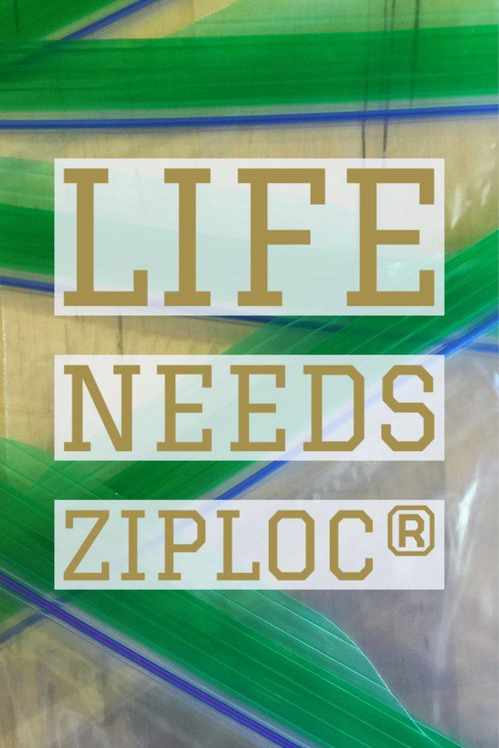 Five Tips For Getting Back To School Savvy! © www.roastedbeanz.com #ZiplocBackToSchool [AD] #CollectiveBias #shop