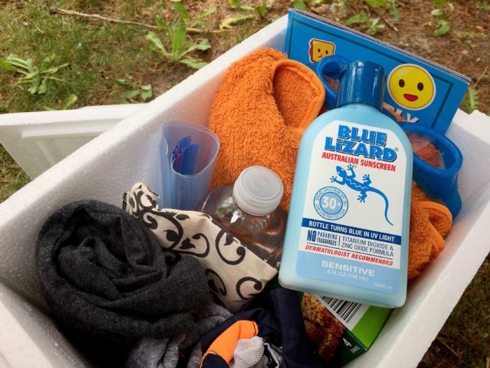 How to pack the family for fun in the sun this summer © www.roastedbeanz.com [AD] #BlueLizardSummer #CollectiveBias #shop